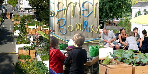 Urbanes gärtnern FF Gartenleben