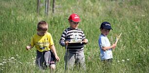 Natur- & Umweltbildung